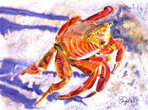 feelin' crabby